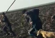 Imagini cumplite au fost filmate pe un camp din Teleorman. Doi tineri spun ca au fost batuti cu batele, iar cainii le-au fost impuscati cu o arma de vanatoare