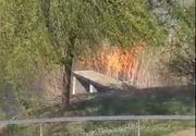 Incendiu puternic in parcul Lacul Tei din Capitala.