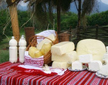 Scandalul copiilor bolnavi din Arges nu a distrus afacerea cu lactate Bradet! Compania...