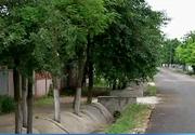 Comuna din Romania in care primarul a facut totul pe dos - Cum arata santurile cu panta de scurgere inversa sau copacii betonati - E de vis... urat