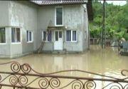 Natura a facut prapad in nordul tarii. Case inundate, animale luate de viitura si oameni izolati. Imagini cumplite