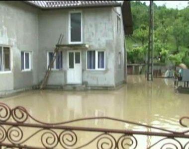 Natura a facut prapad in nordul tarii. Case inundate, animale luate de viitura si...