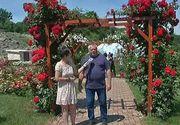 Un adevarat colt de rai cu aproape 200 de specii de trandafiri. Paradisul se afla tocmai  in nordul tarii.