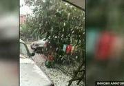 Furtunile au facut prapad in toata tara. Grindina a distrus culturile agricultorilor, iar viitura puternica a distrus peste 600 de stupi