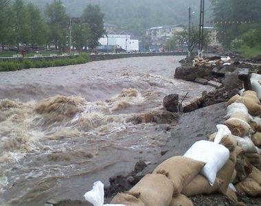 Animale luate de viituri, drumuri inundate, copaci si acoperisuri smulse de vant....