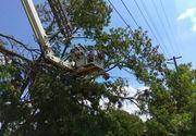Gospodarii inundate, cabluri electrice si copaci cazuti pe sosele, dar si o familie ratacita pe munte in urma intemperiilor