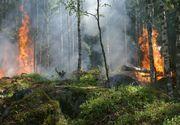 Peste 80 de pompieri, jandarmi, padurari si voluntari au reluat operatiunile de stingere a incendiului din Parcul National Domogled, din Mehedinti