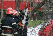 Optsprezece copaci au cazut peste masini sau pe sosea, in urma furtunii produse in Bucuresti si in judetul Ilfov