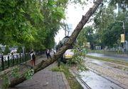 Linia tramvaiului 41 din Bucureşti este blocata. Ce s-a intamplat din cauza furtunii