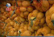 """Jale printre agricultorii romani! Au ajuns sa vanda cartofii cu 20 de bani kilogramul: """"Suntem distrusi total, cauta sa distruga taranul, sa murim de foame"""""""