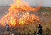 Incendii la marginea unor paduri din Muntii Apuseni si Sureanu, fiind mobilizati zeci de pompieri si voluntari