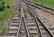 Mecanicul trenului implicat in accidentul de la Branesti: Femeia si copiii au iesit din padure si s-au aruncat direct in fata trenului