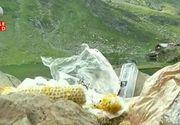 Cea mai frumoasa sosea din lume, Transfagarasanul, zace sub un morman de gunoaie