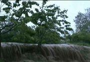 ISU Bucuresti-Ilfov: Opt curti inundate, cinci copaci cazuti pe carosabil si un autoturism blocat in apa, in urma furtunii