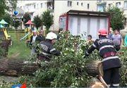 Furtunile devastatoare au lasat un bilant crunt: un om a murit strivit de un copac si o femeie se zbate intre viata si moarte