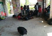 23 de migranti din Irak, printre care si copii, depistati de politistii locali intr-o cladire dezafectata din Timisoara