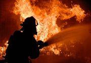 Incendiu puternic in Delta Dunarii! Aproximativ 10 hectare de vegetatie au fost distruse