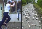 Fenomen inexplicabil - A plouat cu pesti intr-o localitate situata pe coasta - Oamenii sunt terifiati de acest lucru - Imagini cu ploaia ciudata