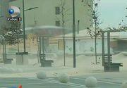 Furtuna a pus stapanire pe judetul Constanta. La Eforie Nord, vantul puternic a doborat un copac direct peste o masina parcata in fata unei locuinte.
