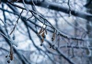 Ne asteapta o iarna grea in Romania. Meteorologii anunta viscol si ninsori abundente