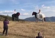 Ce sedinta foto inedita a facut o mireasa, in varful muntelui, calare pe un armasar! VIDEO
