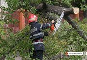 Peste 50 de copaci smulsi de vant in Capitala, fiind avariate 41 de masini. Mai mult de zece interventii sunt in derulare
