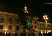 Operatiune dificila la Sibiu! Cum a fost transportat bradul imens de Craciun in Piata Mare