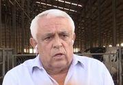 """Ministrul Agriculturii: """"Carnea de porc a scazut la producatori, iar la raft creste"""". Decizia luata de Petre Daea dupa cresterea preturilor la alimente"""
