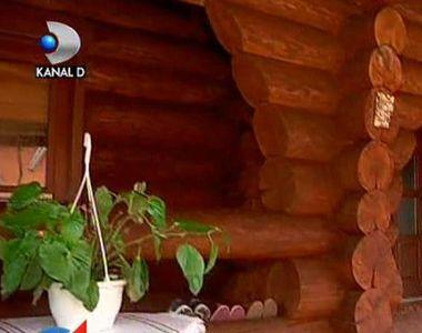 Casele de lemn au revenit moda! Sunt mai ecologice si mai santoase - Cat costa si ce...