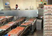 Razboi fara precedent intre autoritati din cauza scumpirilor! De ce s-au scumpit ouale si untul atat de mult?