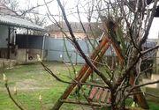 Au inmugurit copacii la Arad! Specialistii atrag atentia: temperaturile ridicate din aceasta perioada ar putea diminua productia de fructe