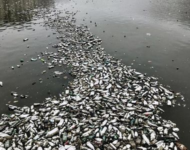 Imaginea dezolanta din Bucurestiul anului 2018 - Au secat Dambovita, dar s-au luat cu...