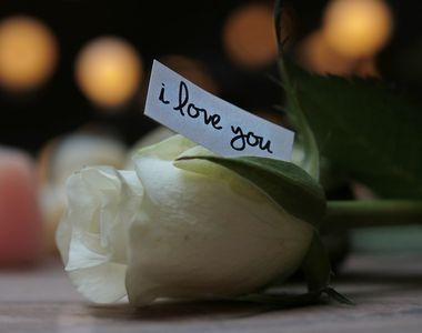 Vanzari record de trandafiri in luna iubirii!