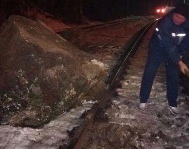 Circulatia feroviara a fost oprita pe o ruta din Banat, dupa ce mai multe stanci au...
