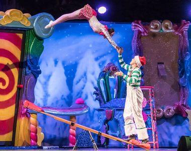 Moarte socanta! Un indragit artist de circ a murit pe scena, in fata propriilor...