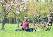 Vremea pe 15 zile in Bucuresti. Sfarsitul lunii martie va fi capricios