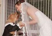 O femeie din Marea Britanie s-a casatorit cu cainele ei! Ceremonia a fost una speciala!