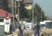 Gigi Becali a blocat circulatia in Pipera, pentru a trece cu turma de mioare! Imagini de senzatie cu oile printre masini si vile luxoase!