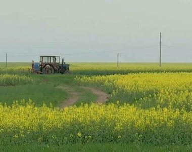 Romania, vanduta hectar cu hectar strainilor! Pana si autoritatile se tem de fenomenul...