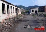 Moartea fetitei din Baia Mare, trasa la indigo cu o crima petrecuta cu exact 10 ani in urma, tot in Maramures!