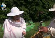 A renuntat la un trai linistit in strainatate pentru o afacere cu albine. Care este motivul si cat castiga acum tanara