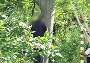 Singuratatea l-a facut sa se omoare! Un barbat din Vaslui s-a spanzurat de nucul din spatele casei parintesti!