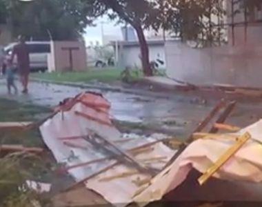 O vijelie puternica a rupt copaci si a smuls un acoperis la Timisoara, iar potopul care...