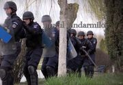 """Jandarmeria are propriul imn: """"Ordinea si legea-n tara, asta-i crezul lor"""". Vestea care i-a surprins pe toti!"""
