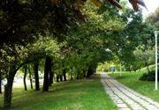 Parcul Verdi, aflat intr-una din cele mai scumpe zone ale Capitalei, Floreasca, este in centrul unui scandal!
