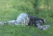 Botosanean rapus de bautura! A plecat de la priveghi si la scurt timp a fost gasit mort intr-un sant!