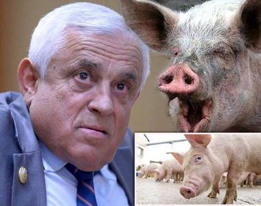 Petre Daea ii invinovateste pe gospodari pentru raspandirea pestei porcine