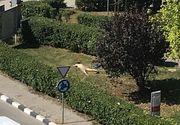 O tanara, complet dezbracata, s-a asezat la plaja in fata Directiei de Finate Giurgiu