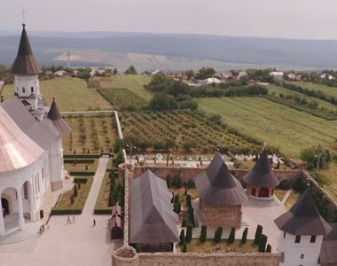 Culturi de canabis, descoperite langa o manastire din Iasi!