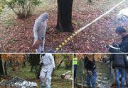 Descoperire macabra chiar in timpul vizitei ministrului Petre Daea, intr-o localitate din Bihor. Un barbat a fost gasit cu gatul taiat
